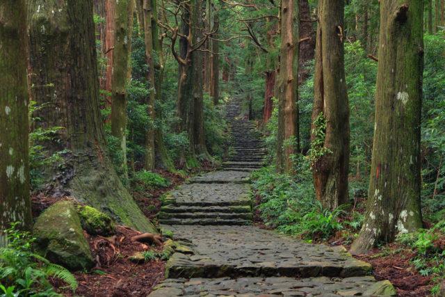 和歌山のイメージ